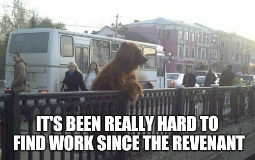 please help in finding jobs for all bears... | IT'S BEEN REALLY HARD TO FIND WORK SINCE THE REVENANT | image tagged in city bear,the revenant,bad luck bear,am i the only one around here,how about no bear,leonardo dicaprio laughing | made w/ Imgflip meme maker