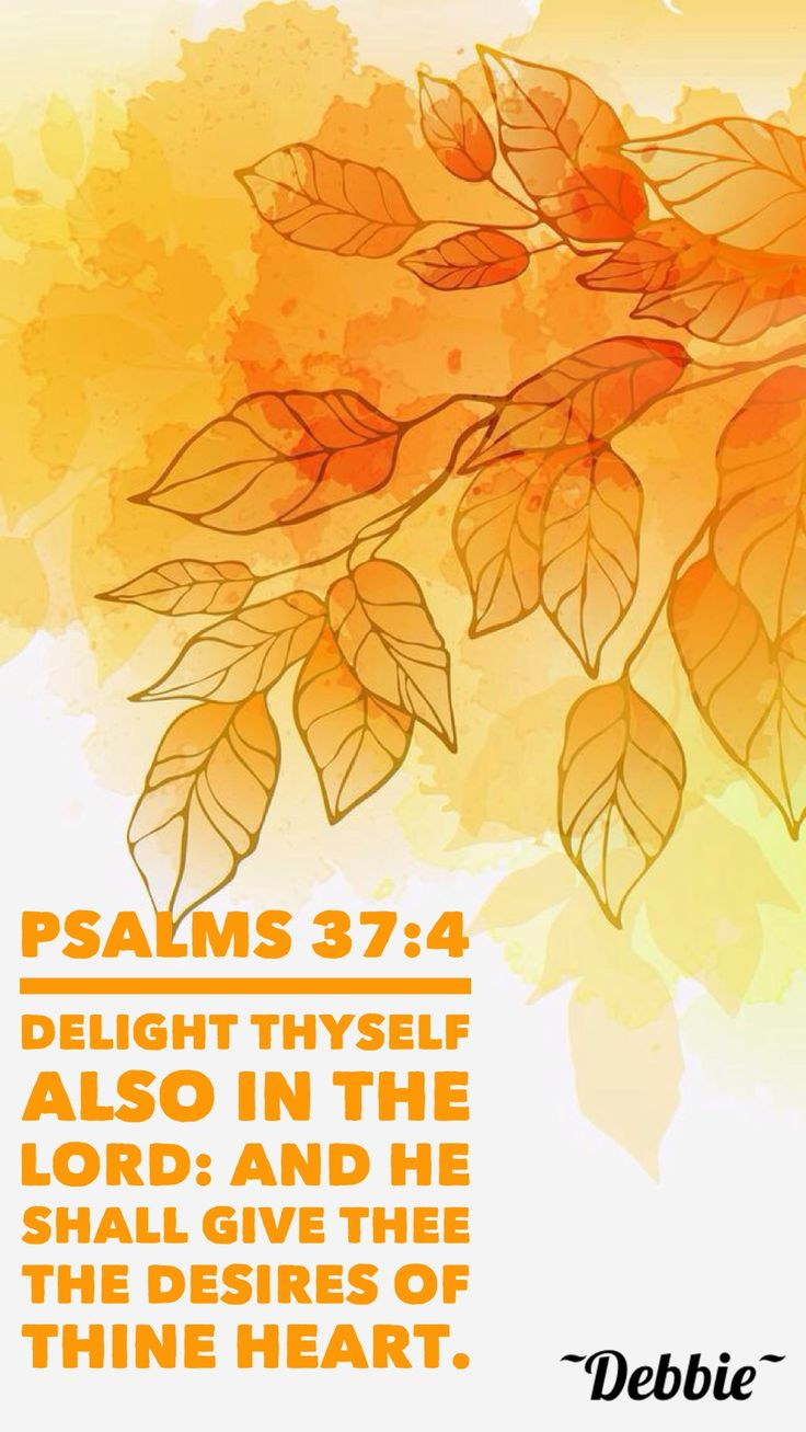 Psalms 37:4 KJV Delight thyself also in the Lord: and he shall give thee the desires of thine heart.