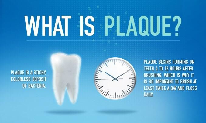 Plaque is a sticky colorless deposit of bacteria. Plaque begins forming on teeth 4 to 12 hours after brushing, which is why it is so important to brush at least twice a day and to floss daily. www.highsierradentalcare.com