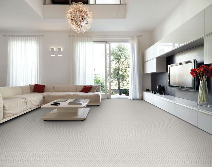 dixie home broadloom carpet rain dance part of the pet protect stainmaster line - Stainmaster Carpet