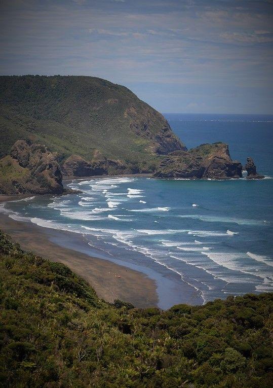 Piha Beach, from hilltop above White's Beach, Waitakere Ranges, Auckland