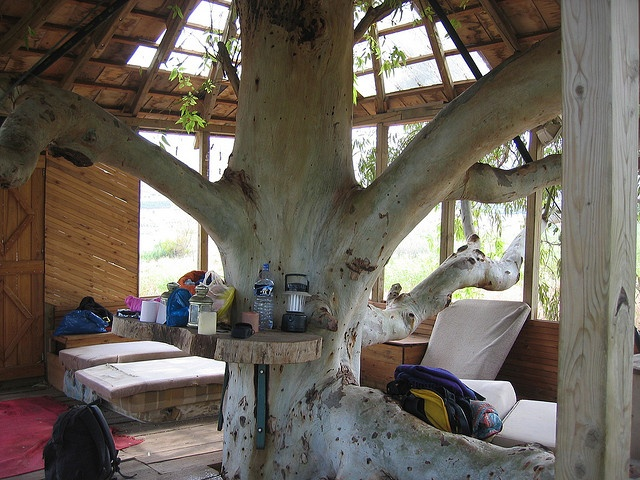Delighful Kids Tree House Inside Interior With Design