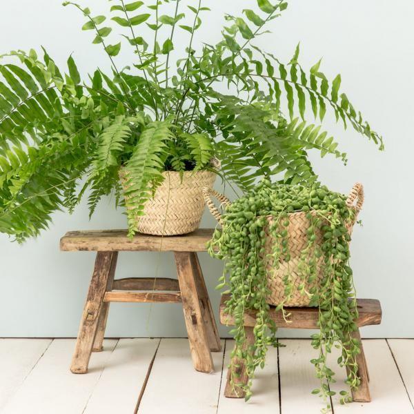 Panier en feuilles de palmier tressées