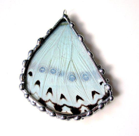 Real Butterfly Pendant Mint Morpho van DebrasDivineDesigns op Etsy