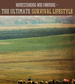Homesteading and Farming: The Ultimate Survival Lifestyle | What you need to know before you go off the grid. #survivallife www.survivallife.com