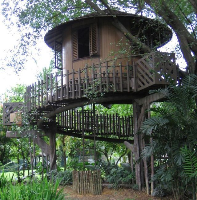 Round Treehouse - I don't know where yet | Treehouses | Pinterest | Tree  houses, Treehouse and Treehouses