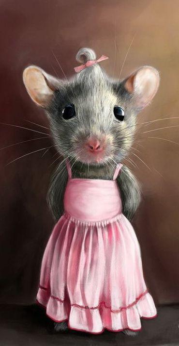 Lustige Mäuse Videos