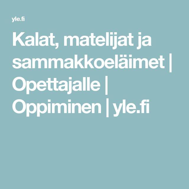 Kalat, matelijat ja sammakkoeläimet | Opettajalle | Oppiminen | yle.fi