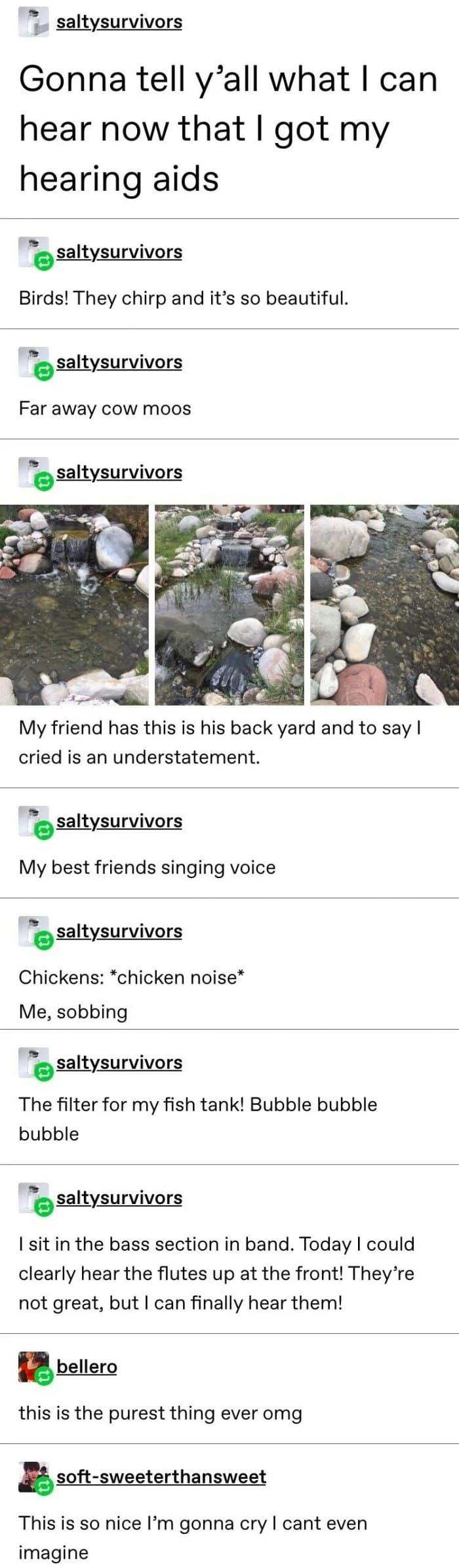 The 17 Best Tumblr Posts I Found This Week