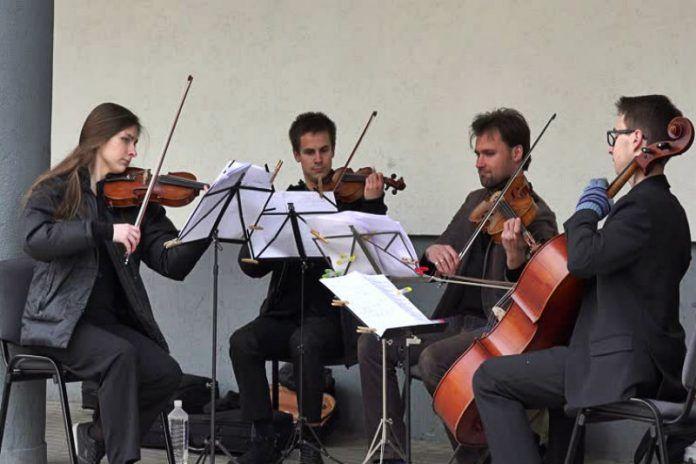 İstanbul Profesyonel Müzik Grupları Kiralama Fiyatları