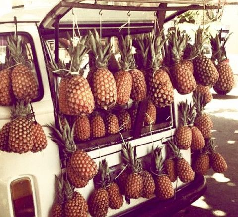 WHY WE LOVE PINEAPPLE?  On the blog www.tropicalgrace.com #pineapple #story #welcome