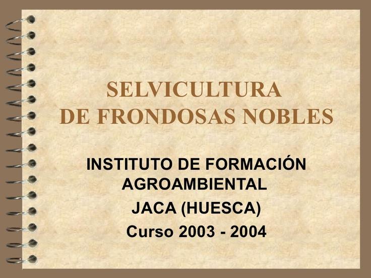 selvicultura-de-especies by Diego Berrueta Fernández via Slideshare