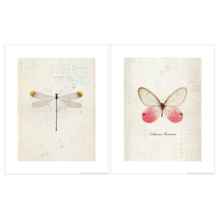 Ikea Bilder Libelle und Schmetterling