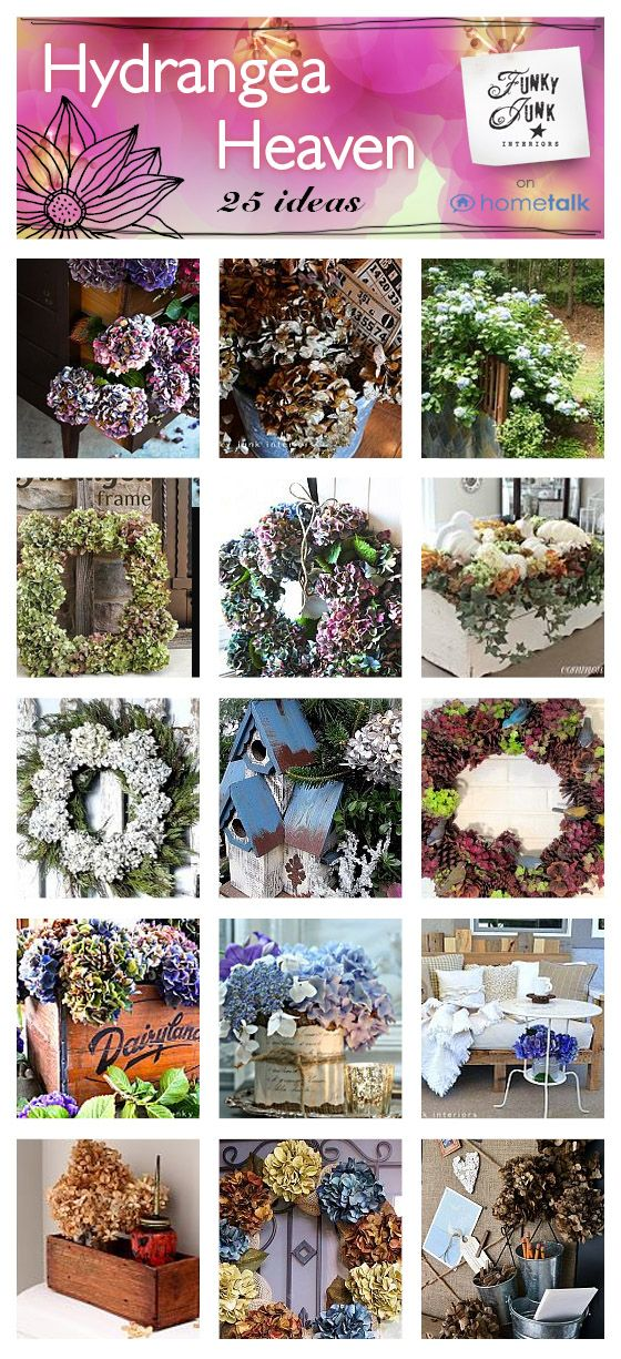 81 best images about decor hydrangeas on pinterest for Funky junk home decor newfoundland