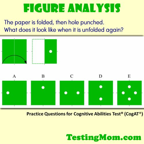 verbal test questions and answers pdf