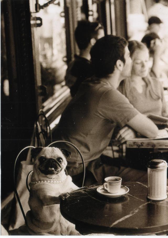 Mais uma xícara por favor, obrigado, de nada.
