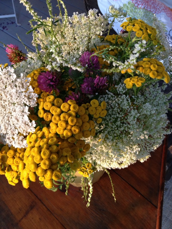 Weed bouquet with tansy, queen anne's lace and wild clover...