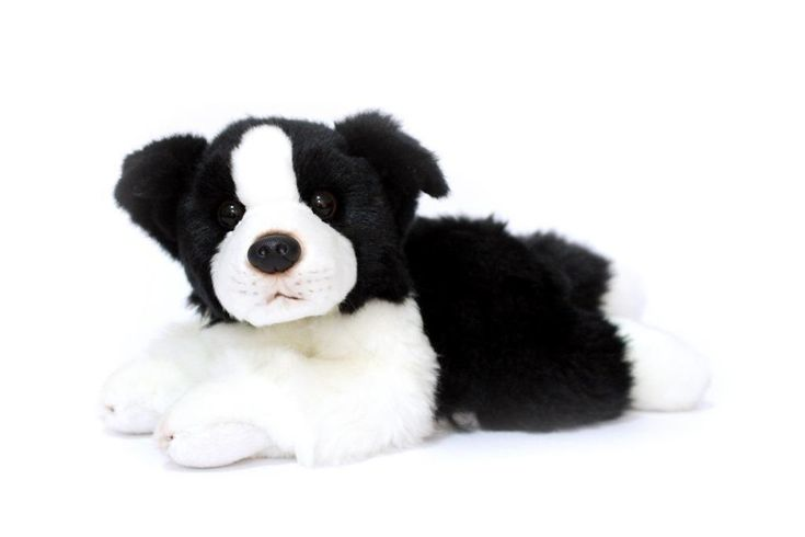 CUDDLY CRITTERS SOFT PLUSH BORDER COLLIE DOG BUDDY I COOL CAT COLLECTABLES