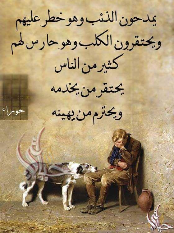 Citaten Filosofie Quran : Pin by iman a on كلمات راقت لي