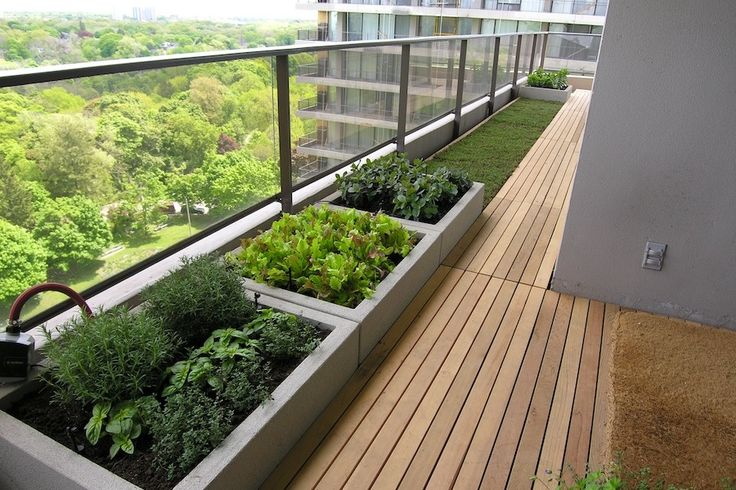 Great contained balcony veg/herb garden