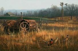 "***SOLD OUT - Thank You!   "" Forgotten Forty "" - Pheasants -  Print by Jim Hautman"