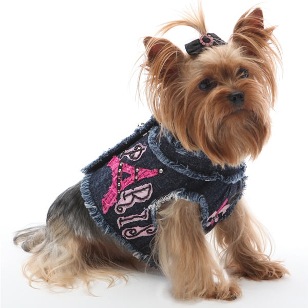 303 best It's a Yorkie Thing images on Pinterest