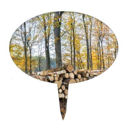 Pile of tree trunks in fall forest.JPG Cake Topper - fall decor diy customize special cyo