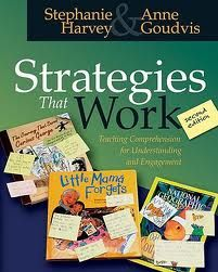 We love the updated chapter on determining importance from Strategies That Work.