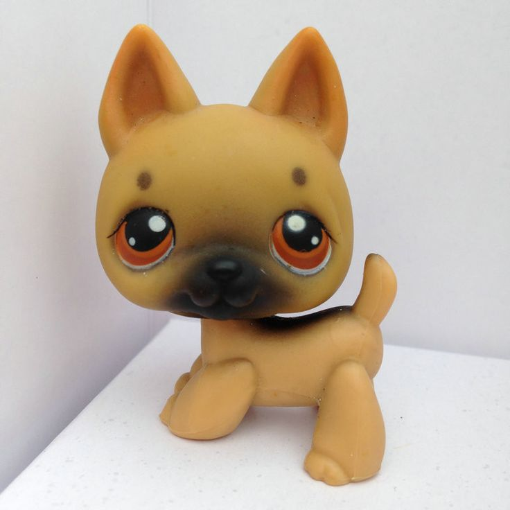 LITTLEST PET Animals Collection LPS Figure Girl Dog DWA110