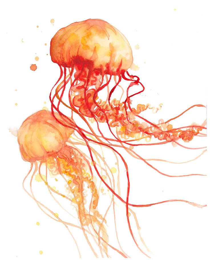 Orange Fire Jellyfish - Print - Abstract - Watercolor - Art - Gifts - Decor by FuzzyLlamas on Etsy https://www.etsy.com/listing/235339716/orange-fire-jellyfish-print-abstract
