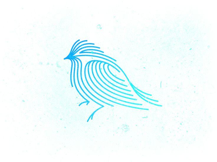 Bird logos design - photo#12
