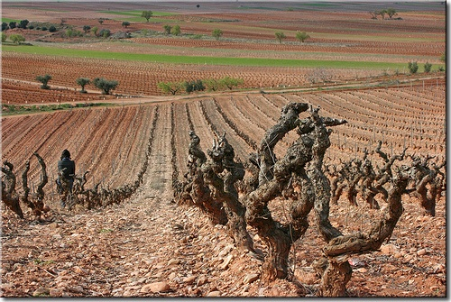 Spain, La Rioja