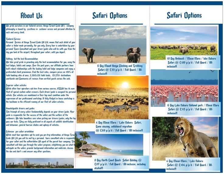 how to make a holiday brochure