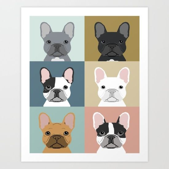 French Bulldog, portraits, pattern, dog person...