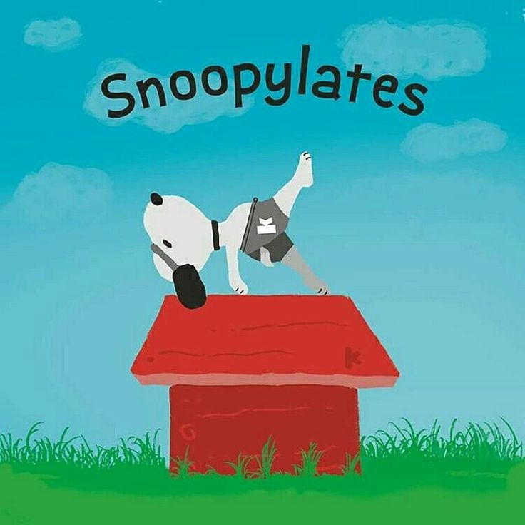 Snoopy pilatero :-)  #pilates #lovepilates                                                                                                                                                                                 Más
