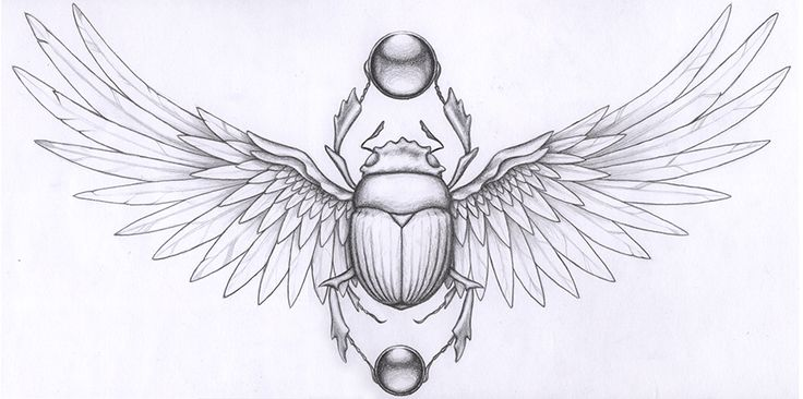 http://evajschultz.com/wp-content/uploads/2012/07/Scarab-Tattoo.website.jpg