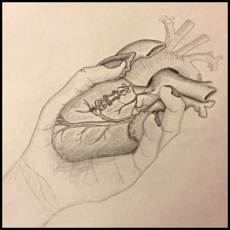 Heart In Hand Drawing | www.imgkid.com - The Image Kid Has It!