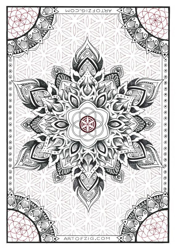 A4 Print Seed to Flower' unframed // Sacred by ArtOfZig