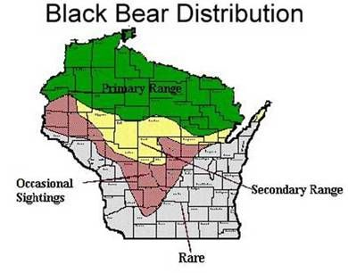 A Slightly Different Wi Black Bear Distribution Map Also Note Due - Us-black-bear-population-map