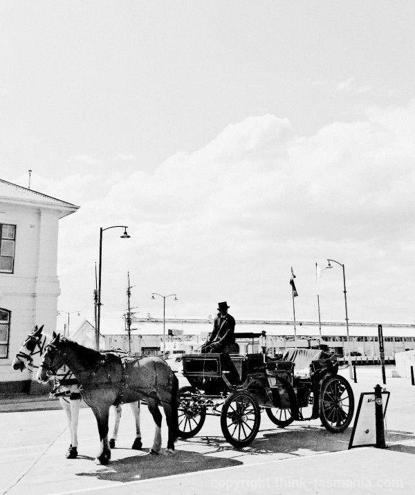 Hobart Heritage Carriages near Franklin Wharf #Hobart #Tasmania #Horses ~ photo and article for think-tasmania.com