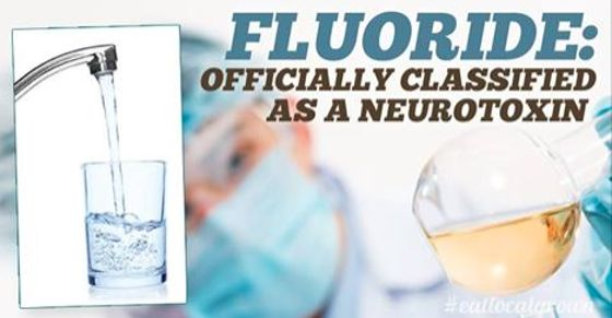Fluoride Officially Classified As A Neurotoxin In World's Most Prestigious Medical Journal - http://nifyhealth.com/fluoride-officially-classified-as-a-neurotoxin-in-worlds-most-prestigious-medical-journal-2/