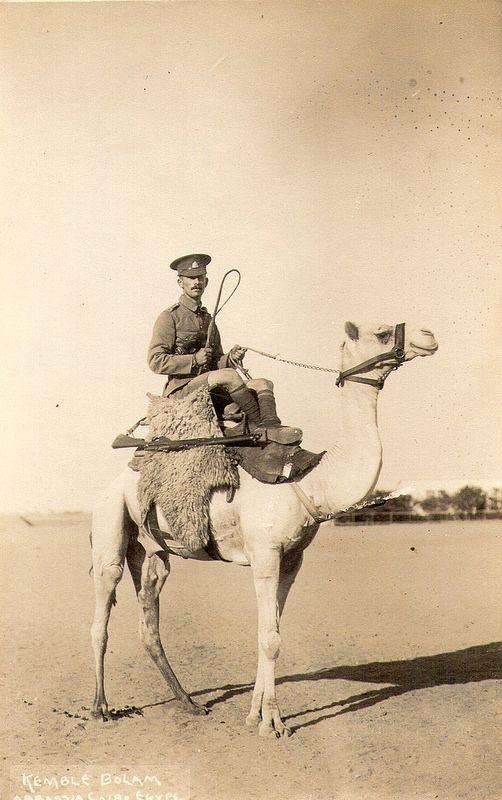 Kemble Bolam, Abbassia, Cairo, Egypt, Imperial Camel Corp ...