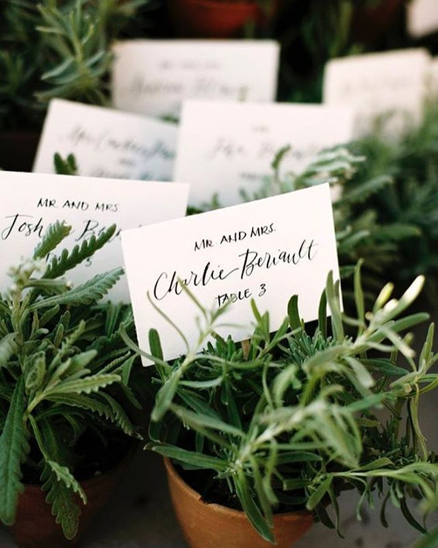 P O T T E D | We love potted place settings! Here are some cute ideas of how to insert this fun sustainable trend into your weddings and dinner parties | www.tablescapesbydesign.com #pottedplants #placesetting #seatingchart #seatingcards #weddingseating #placecards #eventplanning #eventplanner #wedding #weddingideas #eventprofsuk #eventprofs #meetingplanner #meetingplanner #meetingprofs #inspiration #popular #trending #eventplanning #eventdesign #eventplanners #eventdecor #eventstyling…