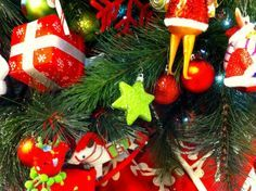 Red and green are the traditional colours of Christmas. They come from the evergreen plants like holly that were and still are used to decorate at Christmas time.