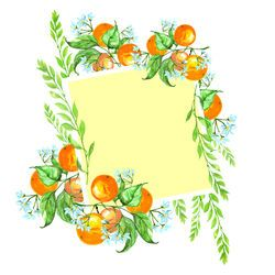 Watercolor card with a vintage pattern of orange, tangerine, citrus. Blooming fruit with leaves on a branch.