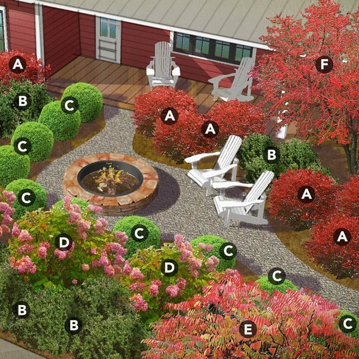 SOUTHEAST Here's a southeastern shrub bed with a tempting invitation to relax. Featuring a mix of evergreens and deciduous shrubs, the landscape envelops the fire pit area with a mosaic of shapes, textures, and colors. The informal shapes of possumhaw and hydrangea bring a lively contrast to rounded geometric companions. Although peaking in autumn, the bed has year-round structure, thanks to yews and boxwoods.