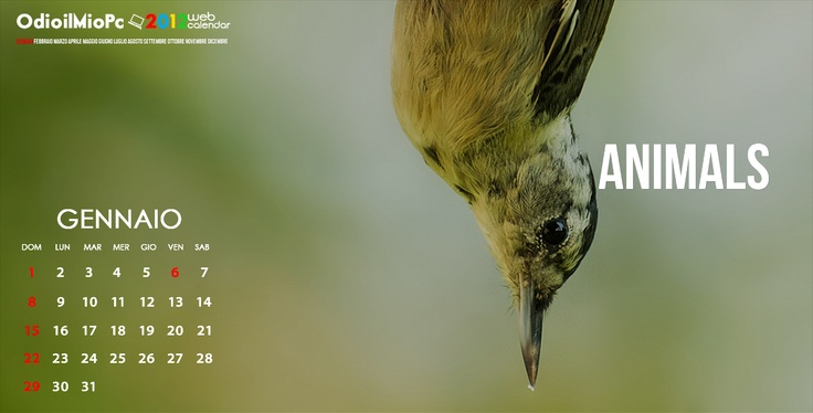 Il calendario online di Odioilmiopc realizzato con uno slideshow a tutto schermo • My personal web-calendar for 2012 made with a fullscreen slideshow