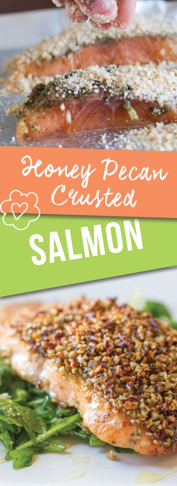 Honey Pecan Crusted Salmon   Love Love Love this simple and easy approach to salmon that combines delicious sweet and savory flavors with honey and pesto. Yum   meikoandthedish.com