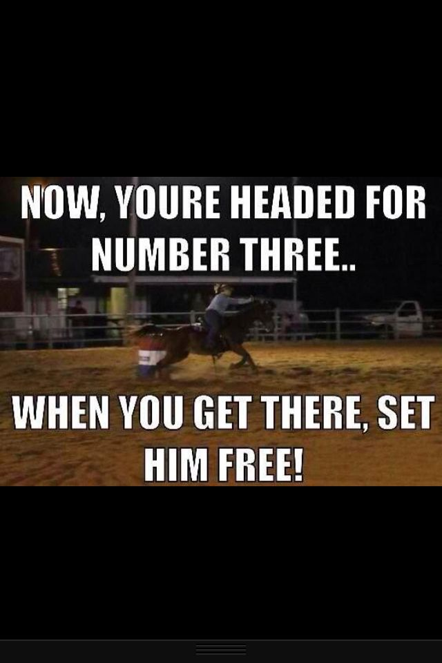 Barrel racing quotes on Pinterest | Explore 50+ ideas with Barrel