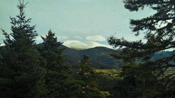 Νέα χρονιά, νέα σελίδα, νέα μονοπάτια ή μήπως αρχαία μονοπάτια;  Παρνασσός, ένα βουνό με πανάρχαια ιστορία και αλπικό δυναμισμό. Ένα ταξίδι στο κέντρο της γης. Το βουνό όπου έζησαν θεοί, μάντεις, νύμφες, ήρωες και κοινοί θνητοί, εκπέμπει από τα προϊστορικά χρόνια μια ακτινοβολία που μαγνητίζει και έλκει τον καθένα μας.   Λιβάδι Αράχοβας – Κωρύκειο Άντρο – Δελφοί.  Δηλώσεις συμμετοχής και επιπλέον πληροφορίες στη σελίδα B-cause.gr